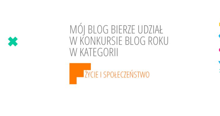 blog-roku-2014